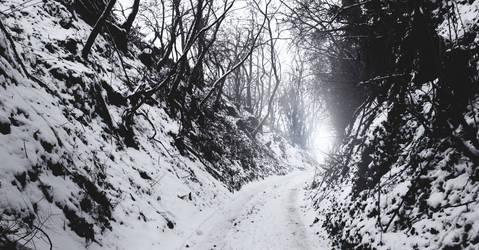 Snow path by TihanaPhotography