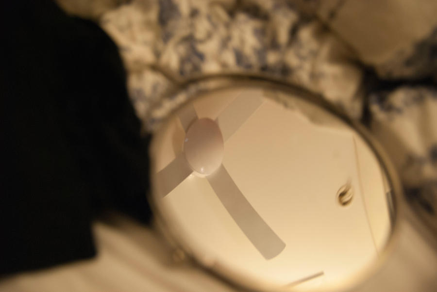 Mirror Fan by lilmoz