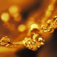 Golden Dreams by Sortvind