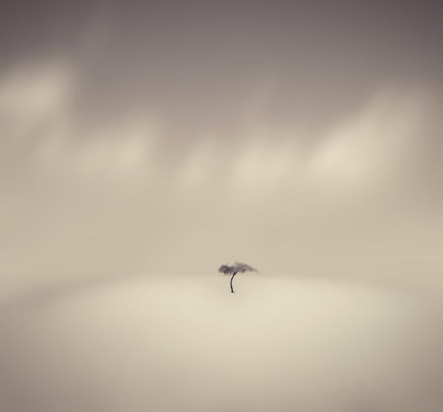 Winds of Egypt by Sortvind