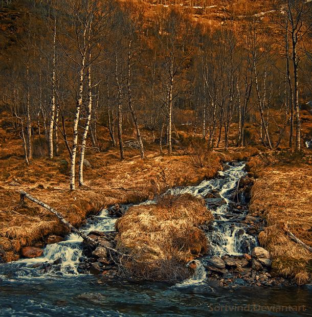 Flow by Sortvind