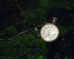Twilight by Sortvind