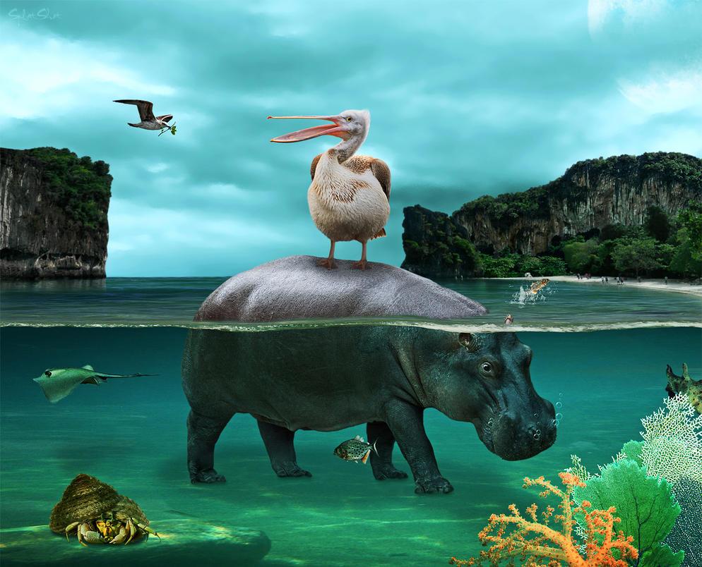 Hippo Island by Splat-Shot