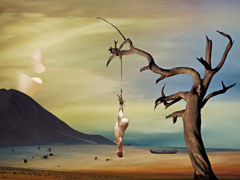 The Hanging Tree By Splat Shot On Deviantart