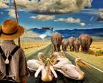 Whacky Animal Road by Splat-Shot