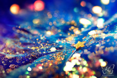 .:starlight:. by kyokosphotos