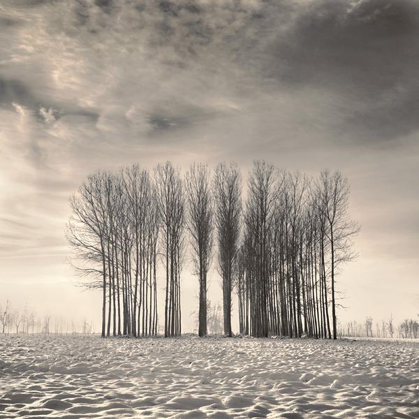 a winter tale..