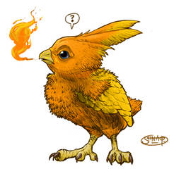Torchic. Surprised! by Heri-Shinato