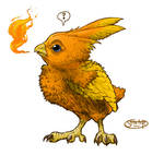 Torchic. Surprised!