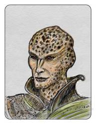 Warleader Na'Kal by natoth