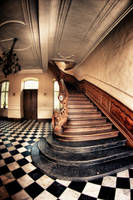 monkey's staircase by APPELBOOM