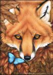 Flutter Fox