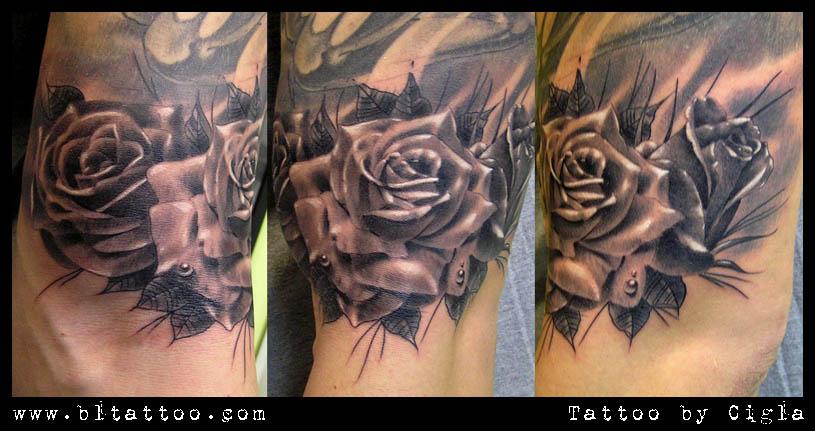 Nikola roses by cigla