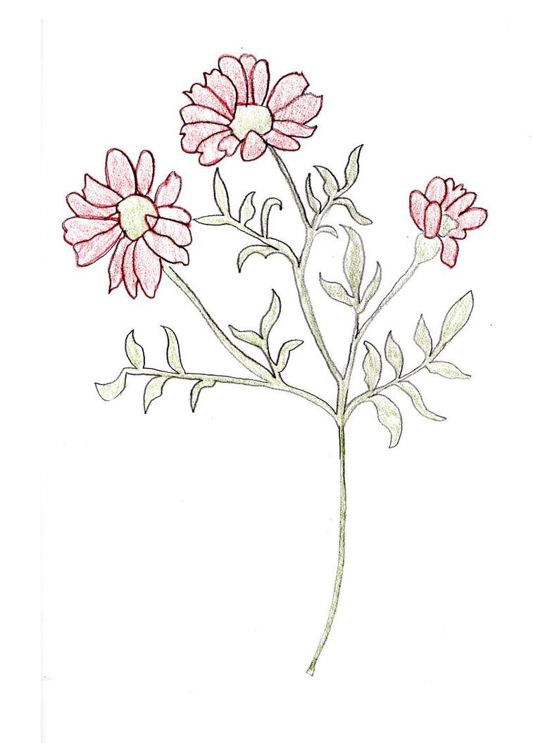 Pretty Flower Drawing Tumblr Images Free Download
