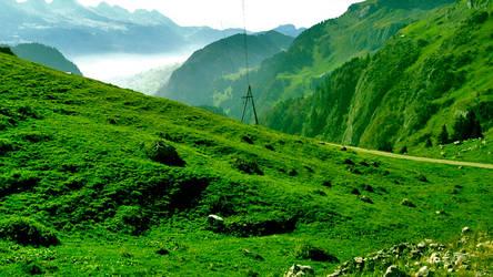 Mountain Lawn