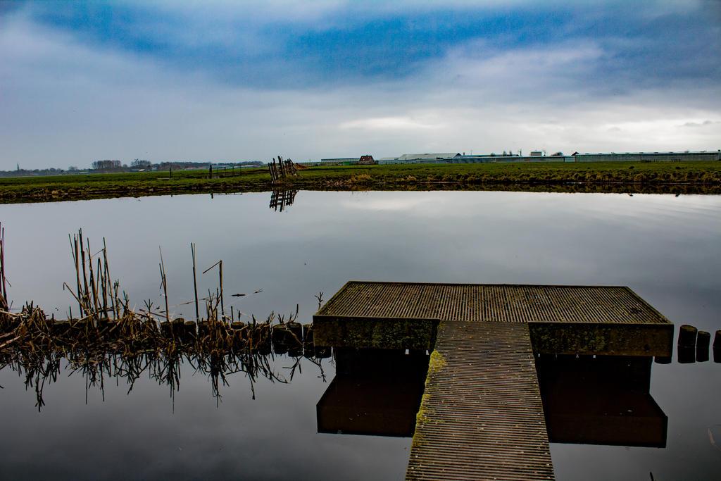 Dock by MortenNL