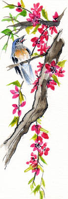 Chinese watercolor bird