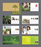 PK Fertilizers Brochure 3