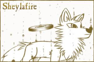 little wolf sketch