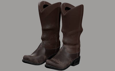 Boots-hipoly