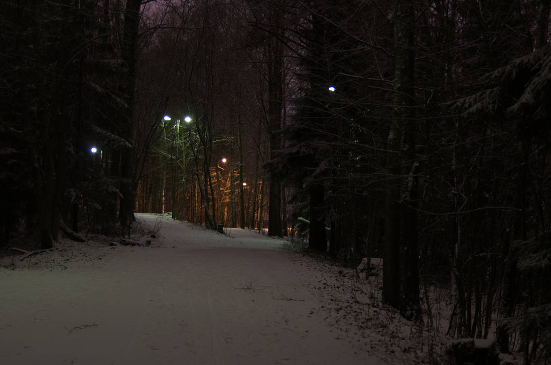 Winternight by Wainaja
