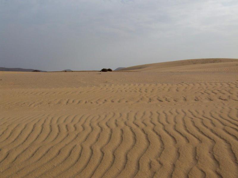 Desert 5 by TimeWizardStock