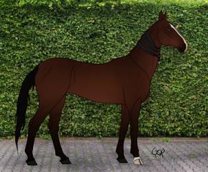 GOR Sayidat Almalakii by Oak-Horses