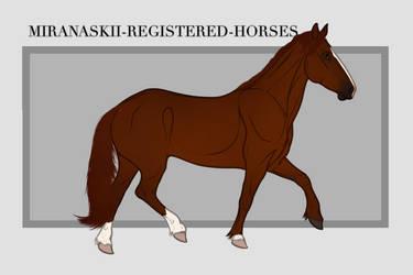 Miranaskii Import 010 - OPEN by Oak-Horses
