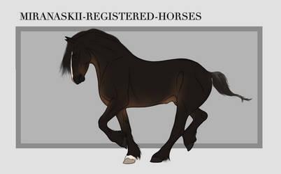 Miranaskii Import 011 - OPEN by Oak-Horses