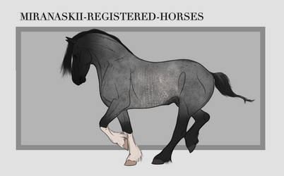 Miranaskii Import 014 - CLOSED by Oak-Horses
