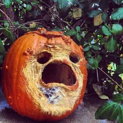 My Pumpkin is Ill by kris-wilson