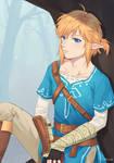 Legend of Zelda: Breath of the Wild - Lost Woods