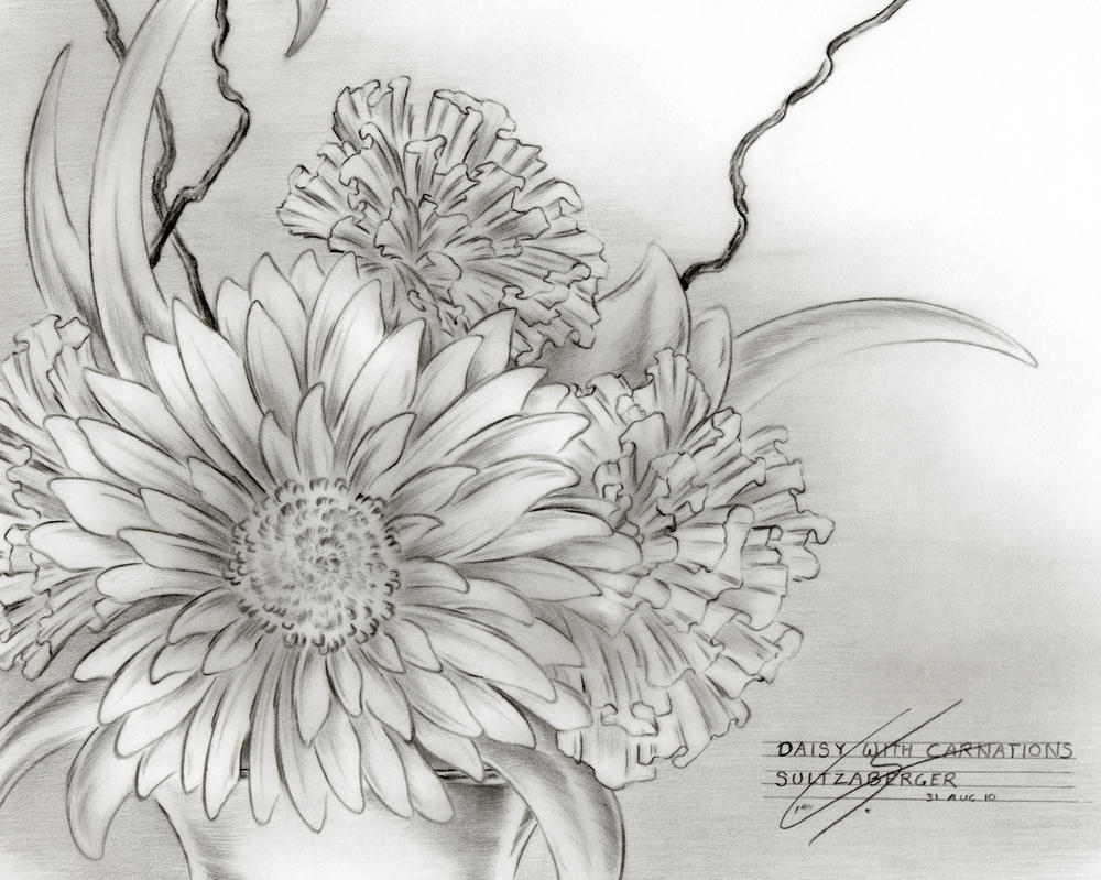 Galerry flower daisy coloring