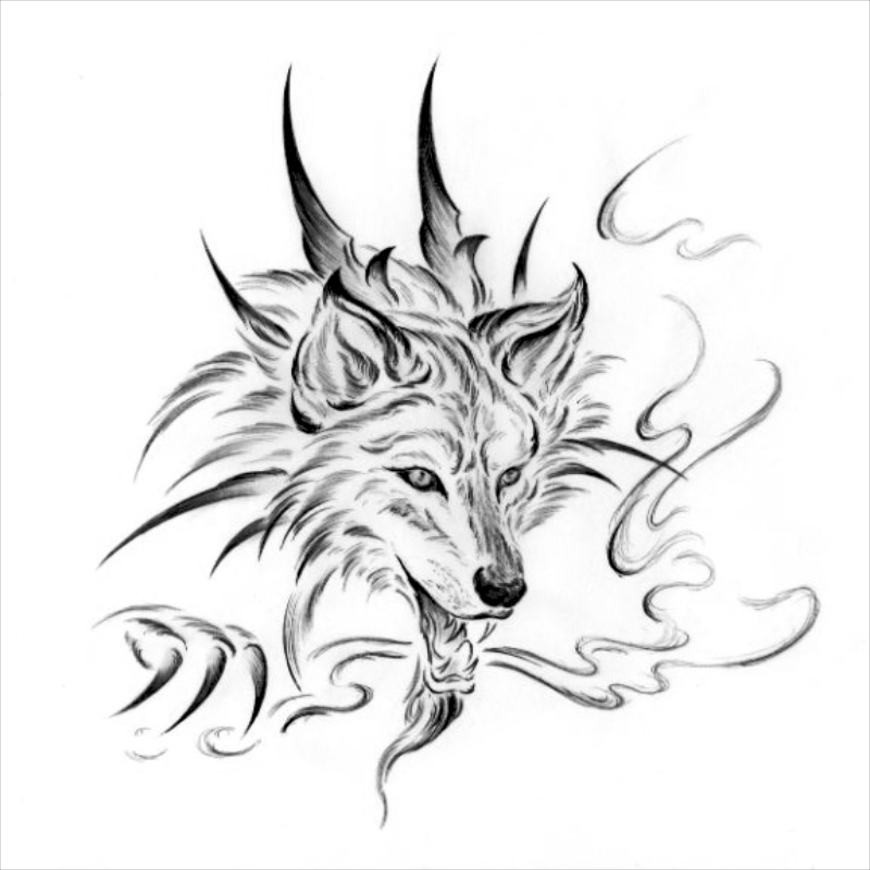 Gallery For gt Wolf And Dragon Drawing