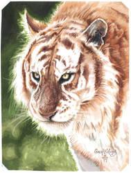 Sacred Animal by PlanetDarkOne