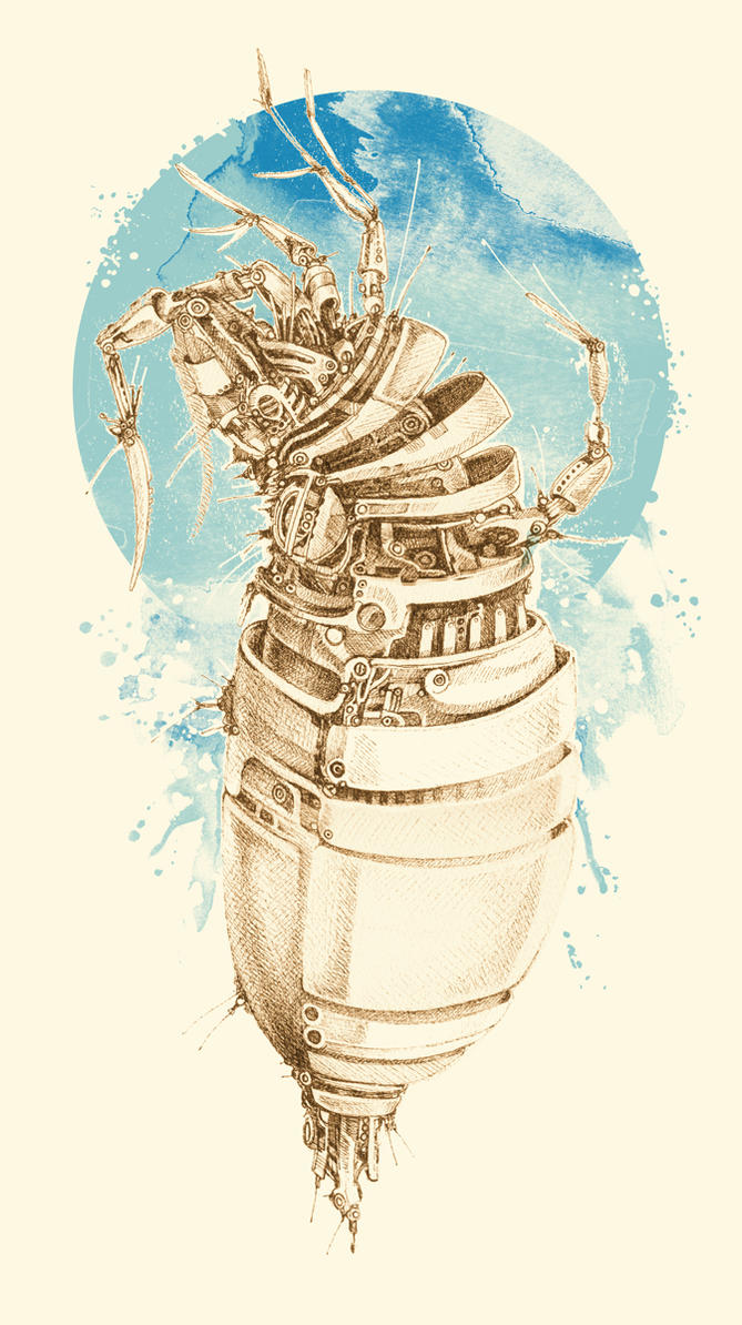 Insekten by tolagunestro