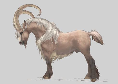 Ibexhorse