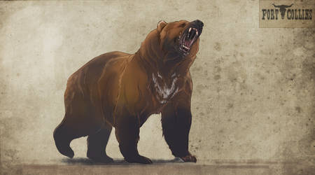 Fort Collins: Mauler the grizzly