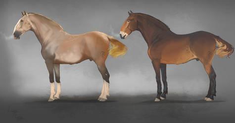 Oragi war-horse by Roiuky