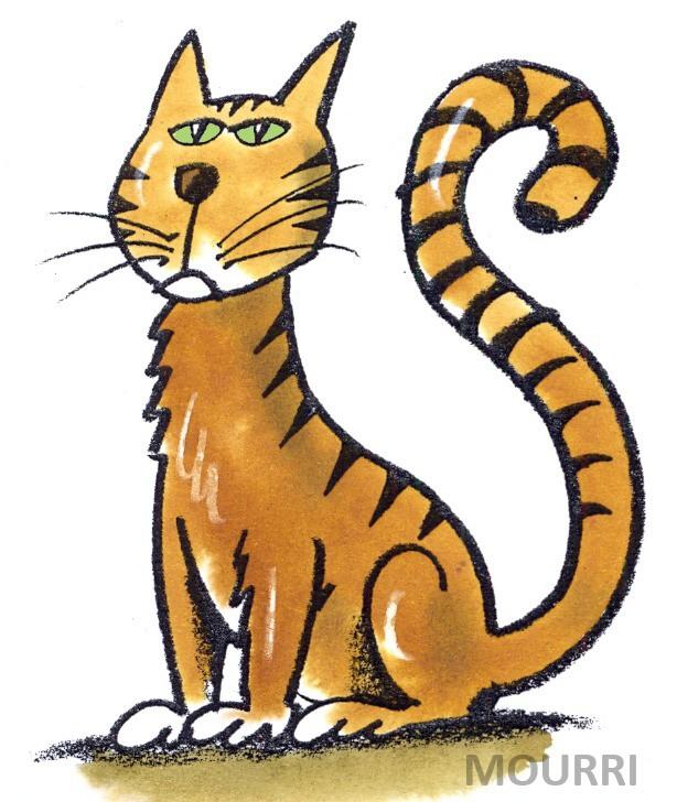 Cat With Long Tail Cartoon