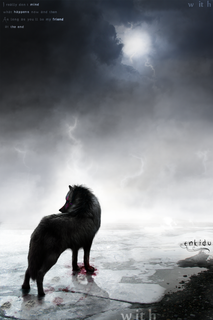 ^ Twilightstars ^ Wolves As_long_as_you__ll____by_Wiith