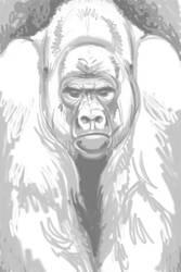Gorilla Gorilla Card Sketch by endangeredark