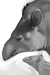 Lowland Tapir Card Sketch by endangeredark