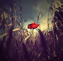 .:: R E D ::. by aiamsaiour