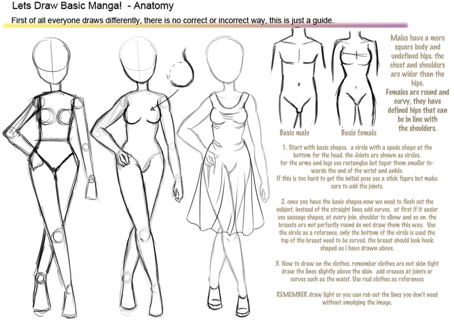 Basic manga anatomy tutorial by hoshi-kou on DeviantArt