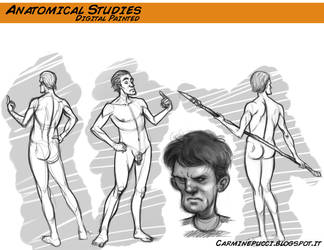 Anatomical Studies by CarminePucci