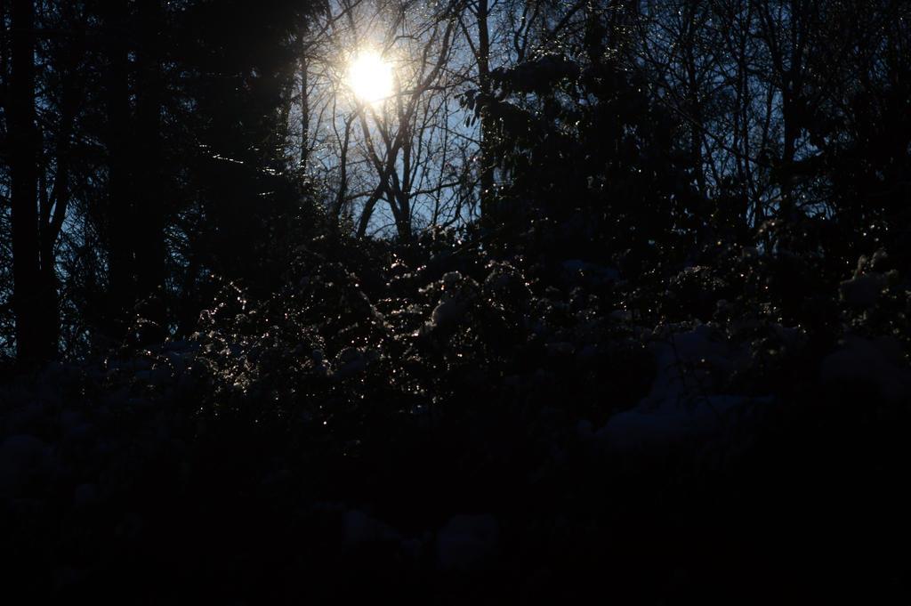 Winter is here 2 by Bladenight91
