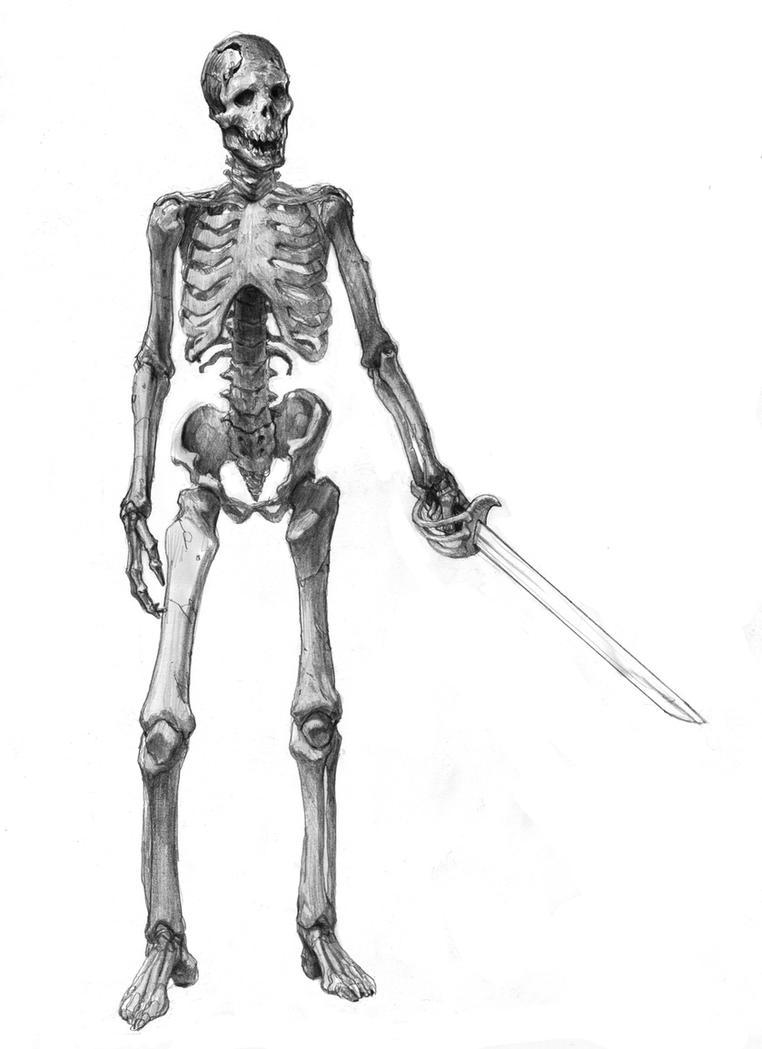 skeleton by AlexPascenko