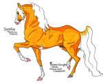 Horse Surefire