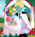 Rainbow Dash x Zephyr Breeze (wedding) by CoNiKiBlaSu-fan